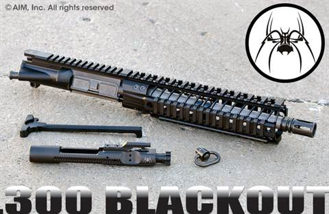 "Spike's Tactical ST-15 10"" BAR-9 .300 BLACKOUT Pistol/NFA URG"